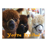 "Llama Llama Invitation 5"" X 7"" Invitation Card"