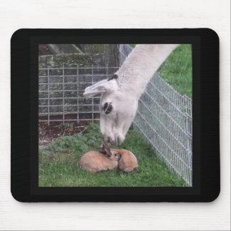 Llama Llove and Bunny Mouse Pad