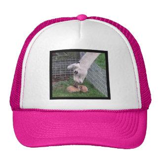 Llama Llove and Bunny Trucker Hat