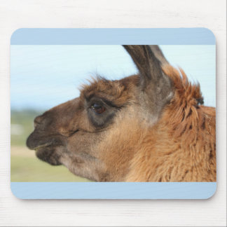 Llama looking left-Brown llama in a field Mouse Pad