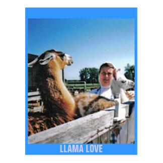 LLAMA LOVE POSTCARD