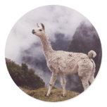Llama Machu Picchu, Peru Classic Round Sticker