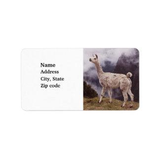 Llama Machu Picchu, Peru Address Label