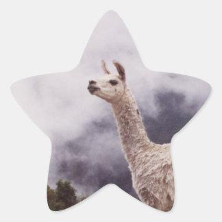 Llama Machu Picchu, Perú Calcomanías Forma De Estrellas