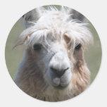Llama Pegatinas Redondas