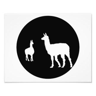 llama photo print