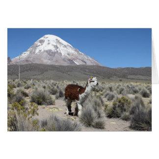 Llama por la montaña de Sajama de la nieve, Tarjeta De Felicitación