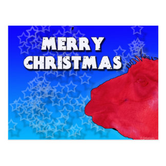 Llama roja del navidad con el cielo tachonado estr tarjeta postal