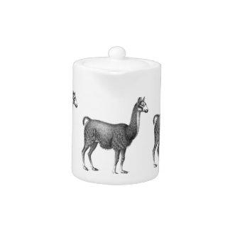 llama rows teapot