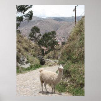 """Llama says """"Viva el Peru!"""" Poster"""