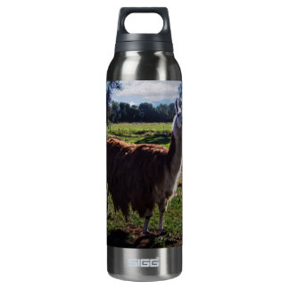 Llama SIGG Thermo 0.5L Insulated Bottle