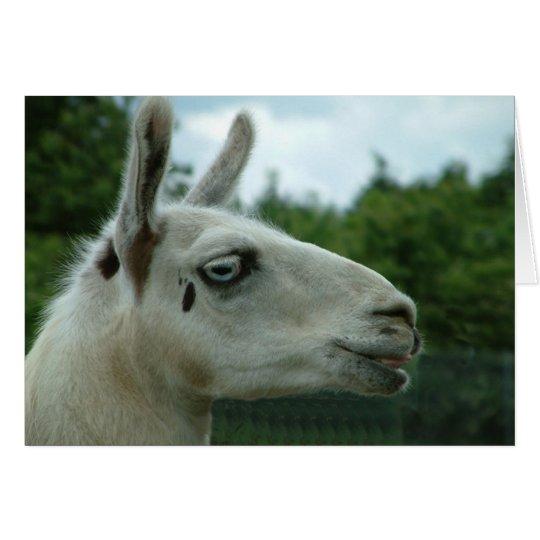 Llama Smiling Card
