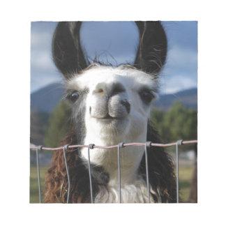Llama sonriente divertida en Oregon meridional Bloc De Notas