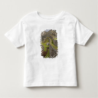 Llama stands on agricultural terraces with toddler t-shirt