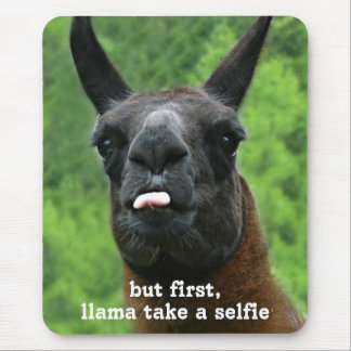 Llama take a selfie mouse pad