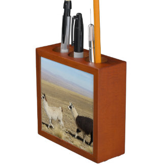 Llama - Two in Andes Mountains Desk Organizer