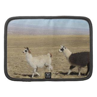 Llama - Two in Andes Mountains Folio Planner