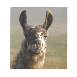 Llama Watch Notepad