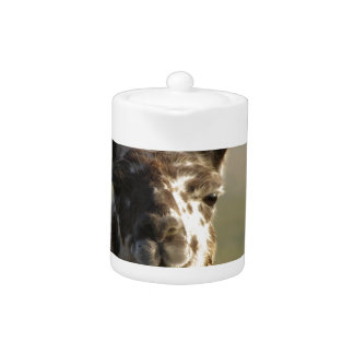 Llama Watch Teapot
