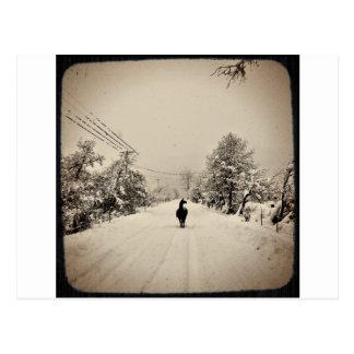 llama winter postcard