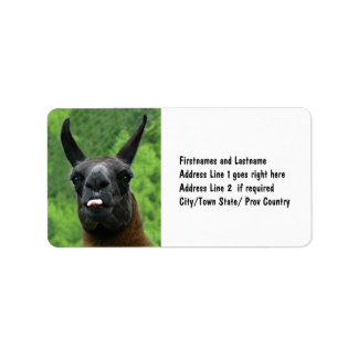 Llama with Attitude - Sticking out Tongue Photo Label