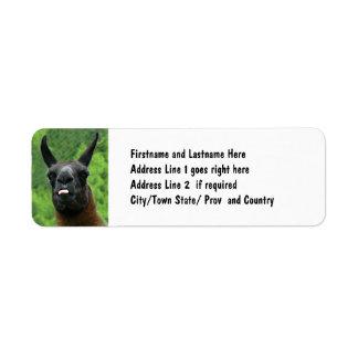 Llama with Attitude - Sticking out Tongue Photo Return Address Label