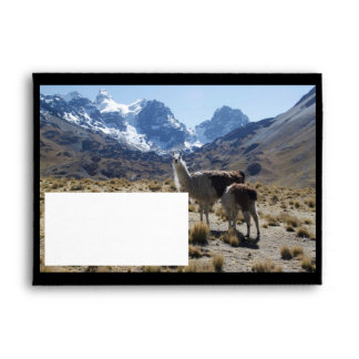 Llama with Nursing Baby Bolivia Mountains Envelope