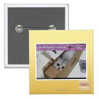 Llamada 1-800-LOLCATS Pins