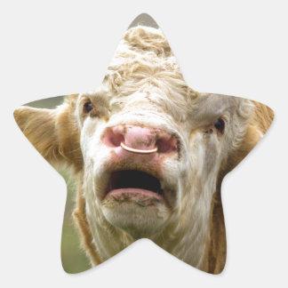 Llamada de Bull Colcomanias Forma De Estrellas