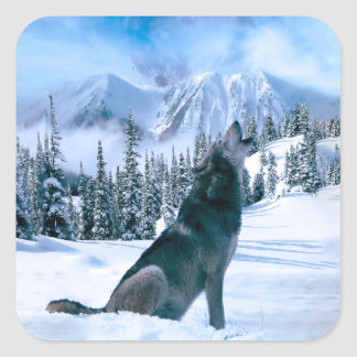 Llamada de lobo pegatina cuadrada