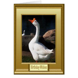 ¡Llamada de todos los cisnes! Tarjeta De Felicitación