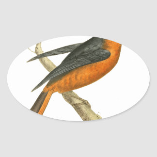 Llamada del ejemplo del pájaro del tordo calcomanías de ovales