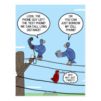 Llamadas del pájaro tarjeta postal