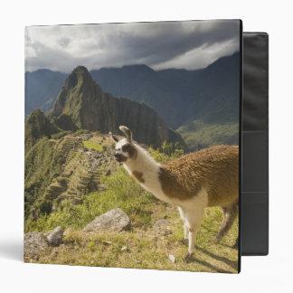 LLamas and an over look of Machu Picchu, Binder