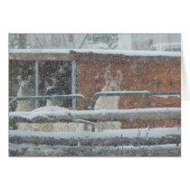 Llamas And Snow Flakes Greeting Card