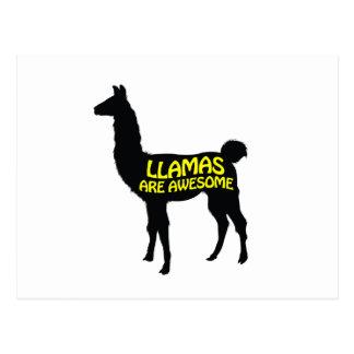 Llamas are awesome! postcard