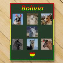 Llamas, Bolivia Flag, Chocolate, Bolivian Pride Chocolate Countdown Calendar