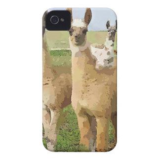 Llamas con una torsión iPhone 4 carcasas