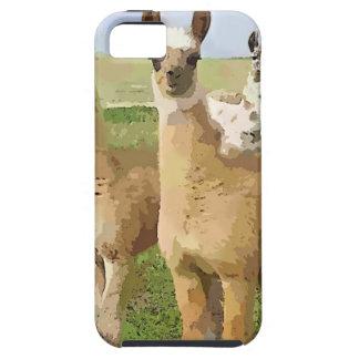 Llamas con una torsión iPhone 5 carcasas