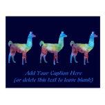Llamas del arco iris tarjetas postales