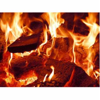 Llamas del fuego esculturas fotográficas