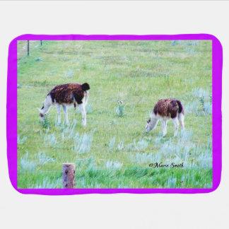 Llamas Grazing on a Warm Summer Day Receiving Blanket