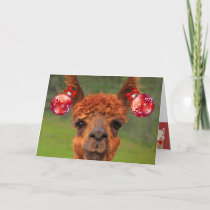 Llamas Love Christmas Holiday Card