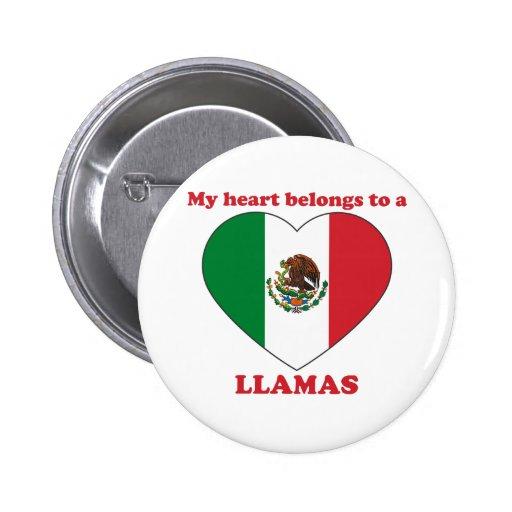 Llamas Pins