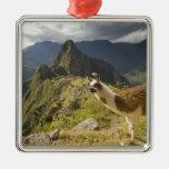 Llamas y una mirada excesiva de Machu Picchu, Adorno Navideño Cuadrado De Metal