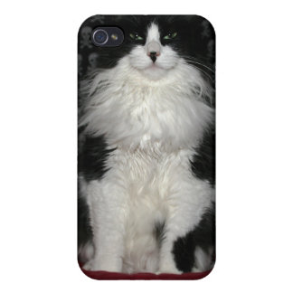llamo por teléfono al caso con el gato y los iPhone 4/4S fundas
