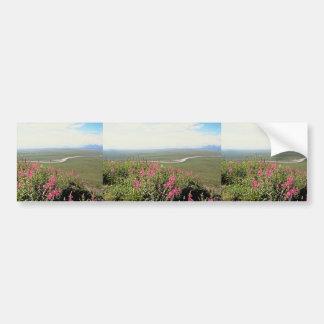 Llano costero etiqueta de parachoque