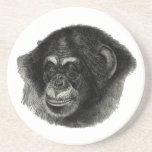 Llano del chimpancé posavasos cerveza