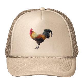 Llano del gallo gorras