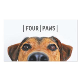 Llano lindo de la foto del perro de la fotografía tarjetas de visita